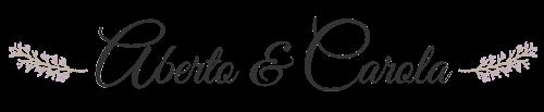 Diseño web Boda Karina